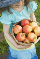 Girl holding bucket full of fresh apples