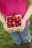 Girl holding fresh crab apples in pint container