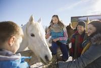 Family feeding horse on ranch 11096034473| 写真素材・ストックフォト・画像・イラスト素材|アマナイメージズ
