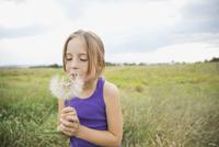 Little girl blowing Tragopogon seeds outdoors 11096037915| 写真素材・ストックフォト・画像・イラスト素材|アマナイメージズ