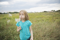 Girl blowing Tragopogon seeds outdoors