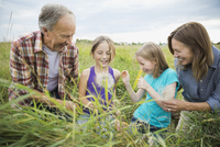 Happy grandparents and granddaughters looking at Tragopogon plant outdoors 11096038226| 写真素材・ストックフォト・画像・イラスト素材|アマナイメージズ