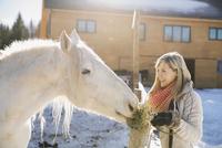 Smiling woman feeding horse 11096039298| 写真素材・ストックフォト・画像・イラスト素材|アマナイメージズ