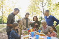 Happy multi-generation family enjoying picnic in park