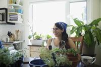 Smiling woman potting plants at kitchen table 11096042286| 写真素材・ストックフォト・画像・イラスト素材|アマナイメージズ
