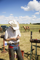 Cattle rancher texting with cell phone