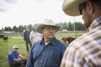 Cattle ranchers talking