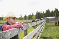 Pensive senior cattle rancher leaning on fence looking away