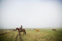 Cattle rancher on horseback on foggy ranch