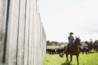 Cattle rancher on horseback on sunny ranch