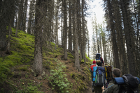 Friends hiking with backpacks in remote woods