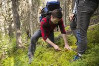 Male hiker cutting mushroom in woods
