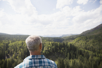 Mature man looking at rural remote treetop view