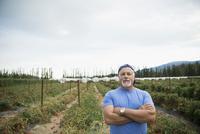 Portrait confident senior male farmer in tomato crop on farm