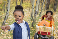 Enthusiastic girl pulling sister and autumn pumpkins in wagon in woods