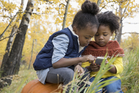 Sisters texting with cell phone in autumn woods