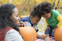 Mother and daughters drawing carving pumpkins 11096046718| 写真素材・ストックフォト・画像・イラスト素材|アマナイメージズ