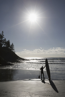 Paddleboarder standing with paddleboard on sunny beach 11096048746| 写真素材・ストックフォト・画像・イラスト素材|アマナイメージズ