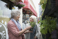 Senior women shopping for plants at urban storefront sidewalk 11096053458  写真素材・ストックフォト・画像・イラスト素材 アマナイメージズ