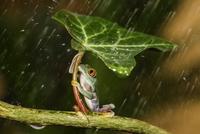 Ohh Nooo :( Raining