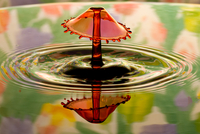 Water droplet splash