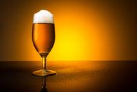 cold german Beer (Pilsener Bier)