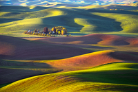 Palouse Plantation
