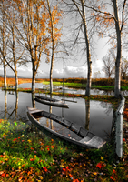 Abandoned boats on pond in autumn