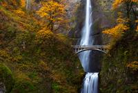 Scenic view of waterfall and bridge