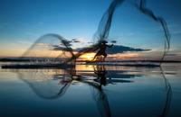 Fisherman throwing fishing net