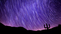 Startrails on dark sky over silhouette landscape, California, USA