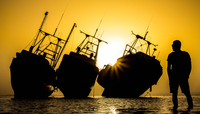 Silhouette of man looking at three ships aground, Camp Doha, Kuwait