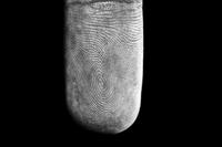 Fingertip close-up