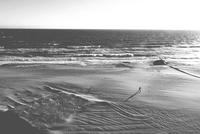 Man walking on beach, Virginia Beach, Virginia, USA