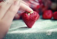 Hand touching strawberry