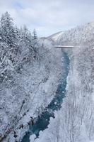Biei River in winter, Biei, Hokkaido, Japan