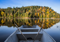 View of forest from boat, Mont-Tremblant, Quebec, Canada