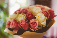 Close-up of bouquet of roses