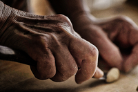 Close-up of hands of senior woman making orecchiette pasta, Francavilla Fontana, Apulia, Italy