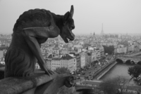Gargoyle on Notre Dame de Paris, Ile-de-France, France