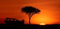 Silhouette of safari vehicle against sunrise skies
