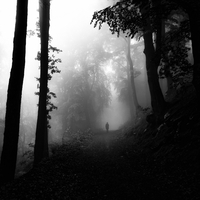 Ominous figure in forest, Marburg, Hessen, Germany