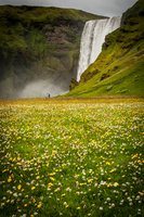 Waterfall over meadow, Skogar, Iceland