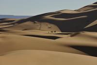 Desert landscape, Morocco