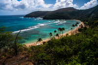 Exotic bay, Hanauma bay, Hawaii