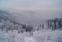 Winter landscape, Bielsko-Biala, Beskids, Poland 11098031598| 写真素材・ストックフォト・画像・イラスト素材|アマナイメージズ
