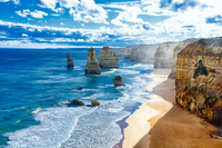 Large group of birds on sand, Twelve Apostles, Victoria, Australia