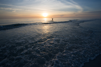Lone man standing in water during sunset, Sarasota, Florida, USA