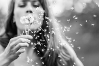 Young woman blowing dandelion, Neuburg, Germany