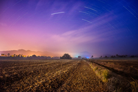 Night sky with star trails over rice paddy, Balik Pulau, Penang, Malaysia